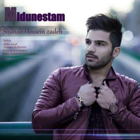 دانلود آهنگ جدید شهاب حسین زاده میدونستم