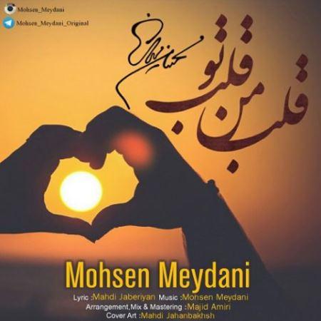 دانلود آهنگ جدید محسن میدانی قلب من قلب تو
