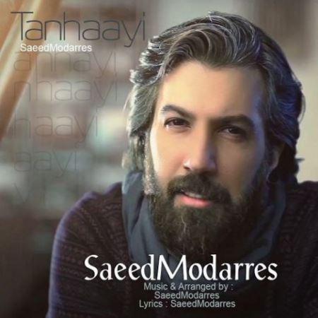 دانلود آهنگ جدید سعید مدرس تنهایی