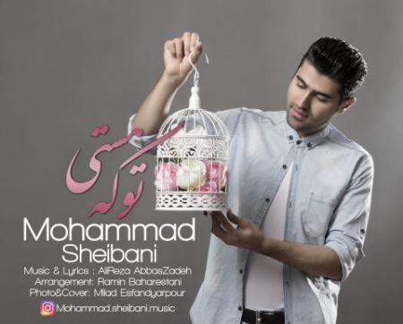 دانلود آهنگ جدید محمد شیبانی تو که هستی
