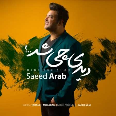 دانلود آهنگ جدید سعید عرب دیدی چی شد