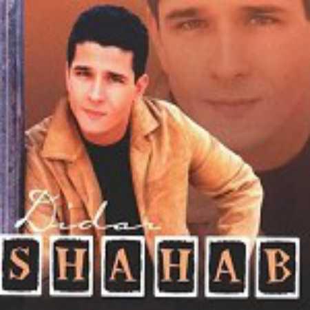 دانلود آهنگ فریبا فریبا دلارام زیبا از شهاب مقامی