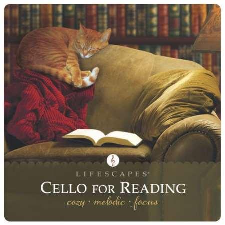 دانلود آهنگ های زیبا و آرامش بخش برای مطالعه