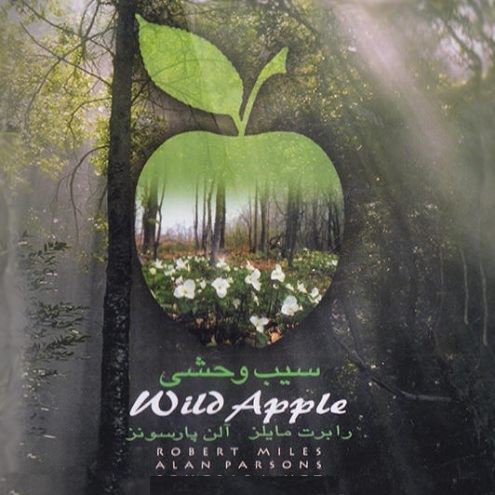 دانلود آهنگ های الکترونیک دنس در آلبوم سیب وحشی