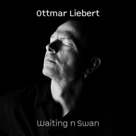 دانلود آلبوم بی کلام گیتار اوتمار لیبرت در انتظار قو