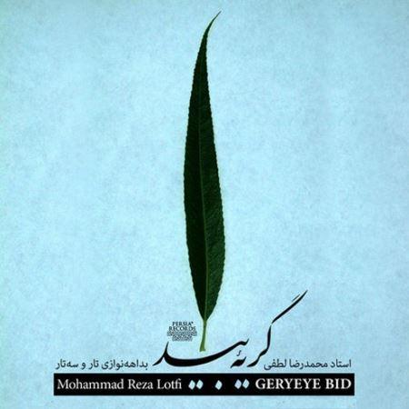 دانلود رایگان آلبوم گریه ی بید بداهه نوازی تار و سه تار استاد محمدرضا لطفی